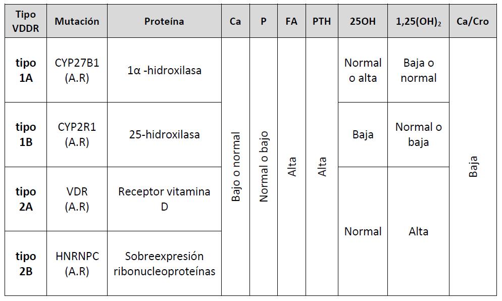 Raquitismo vitamina d dependente